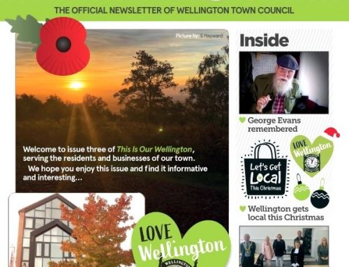 This is our Wellington – November 2020 Issue